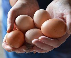 Koronawius zwiększył zapotrzebowanie na jaja. Polska będzie mogła sprzedawać je do Tajlandii