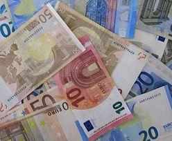 Kursy walut NBP 31.08.2020 Poniedziałkowy kurs euro, funta, dolara i franka szwajcarskiego