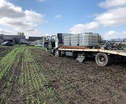 Susza w Polsce. 676 mln zł na pomoc rolnikom. Pieniądze trafią też do gospodyń