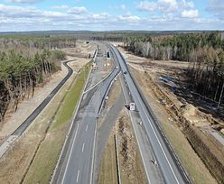 Nowe przepisy wstrzymają budowę dróg. Ekolodzy dostali nowe narzędzia