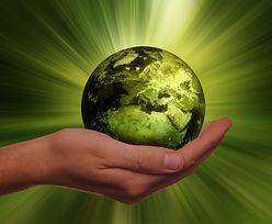 Przyszłość ma zielony kolor