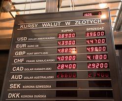 Kursy walut. Złoty słabszy od większości walut regionu