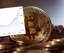 Padł rekord. Bitcoin po 100 tys. dolarów? Niektórzy pukają się w głowę, dla innych to oczywiste
