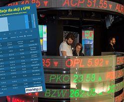 Rekomendacje giełdowe. Analitycy wskazali ponad 20 spółek niedocenianych przez inwestorów