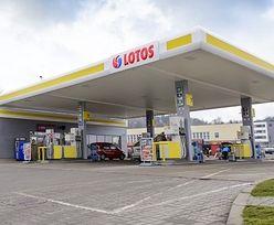 """Lotos zamienił straty w zyski. To efekt """"tanich warstw ropy naftowej"""""""