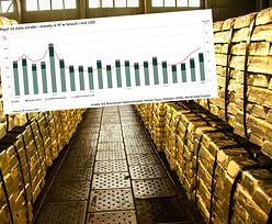 Gorączka złota. Mennica Skarbowa przewiduje rekordową sprzedaż idącą w tony