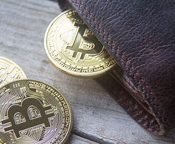 Bitcoin wart tyle co kawalerka w dużym mieście. Padł kolejny rekord na giełdzie