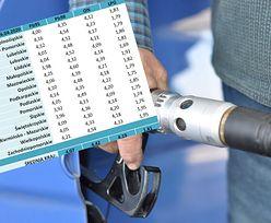 Diesel ciągle droższy od benzyny. Dlaczego i czy tak zostanie?
