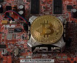 """Kryptowaluty. Bitcoin otrzymał kilka ciosów. """"Sezonowy szał minął"""""""