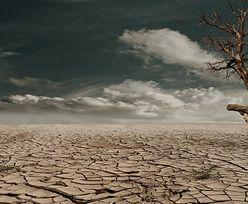 Susza i wyzwania związane ze zmianami klimatu - Dzień 2, debata 3