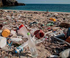 10 tys. zł grzywny. Rząd zaostrza kary za nielegalne wyrzucanie śmieci