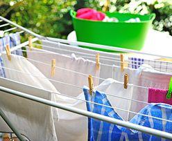 """Urząd porównał różne proszki do prania. """"Najlepiej"""" wyjdziemy na środkach z dyskontów"""
