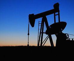 Ceny ropy na giełdach lekko odbiły. Ale benzyna już poniżej 4 zł