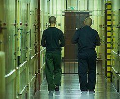 Szefowie więzienia przyjmowali cenne łapówki. Gangsterzy wręczali im kradzione telewizory i drogie alkohole