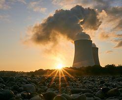 Elektrownia atomowa w Polsce. Szczegóły dopiero w przyszłym roku