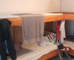 Kwatery dla pracowników z Ukrainy. Pleśń na ścianach i ciepła woda raz w tygodniu