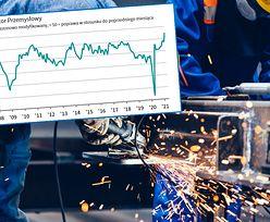 Rekordowe wyniki w przemyśle. Indeks PMI zaskakuje