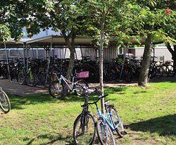 Dopłata do roweru w zamian za stary samochód? Francuzi stawiają na ekologiczne rozwiązania