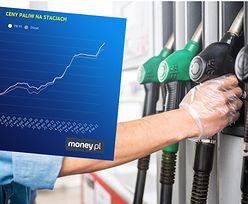 Ceny paliw wystrzeliły. Ile zapłacimy za tankownie w wakacje?