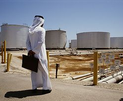 10 mld drzew na pustyni. Arabia Saudyjska chce walczyć z emisją CO2