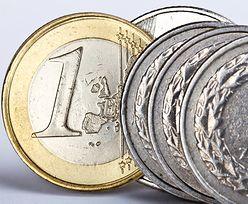 Kursy walut. Złoty zyskał po decyzji Europejskiego Banku Centralnego