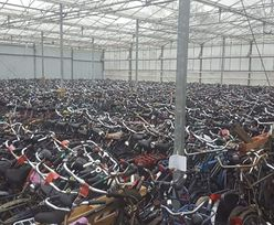 Polacy uwielbiają używane samochody z Niemiec. Pewien Łotysz chce, by pokochali też używane rowery z Holandii
