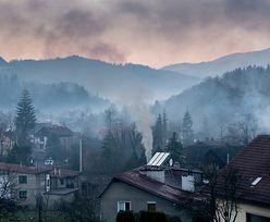 Walka ze smogiem. Sejmowa komisja za karaniem za sprzedaż i import kopciuchów