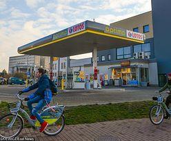 Rekordowe statystyki Lotosu. Sprzedał prawie 5,5 mln ton oleju napędowego
