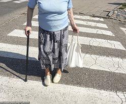 13. emerytura dla emerytów i rencistów. Ile dodatkowo dostaniesz w 2019 r.?