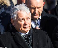 """""""Piątka Kaczyńskiego"""". Wyborcy PO wyrazili swoje zdanie"""