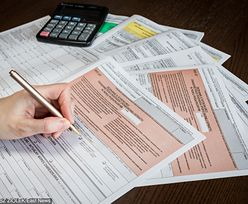 PIT. Podstawowe zasady składania deklaracji podatkowej w 2019 r. Kiedy dostaniemy zwrot podatku za ubiegły rok?