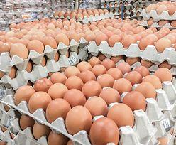 Polskie jajka wrócą na Bliski Wschód. Emiraty Arabskie znoszą zakaz