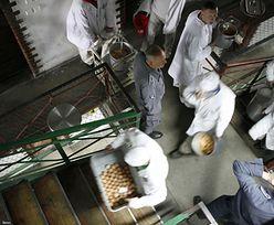 """Zakłady karne szykują się na koronawirusa. """"Przepisy pozwalają zwolnić nawet 30 proc. więźniów"""""""