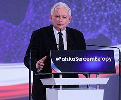 Konwencja PiS. Wielki powrót krowy 500+. Kaczyński twardo: nie dla uchodźców