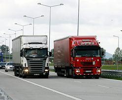 Branża transportowa. Litewskie samochody coraz śmielej ścigają się z polskimi