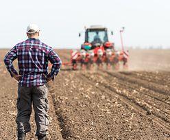 Rolników dopadła choroba zawodowa. Przez atak kleszczy jest najgorzej w historii