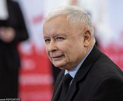 Wybory 2019. Kaczyński: śmiano się, ale będzie 500 zł na krowę
