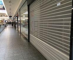 Zakaz handlu w niedzielę uderza w małe centra handlowe. Wielkie rosną w siłę