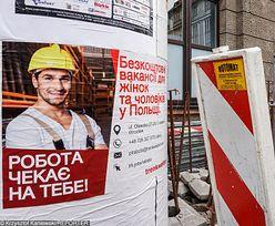 Bój o pracownika. Ukraińcy wyjadą, jeśli rząd nic nie zrobi