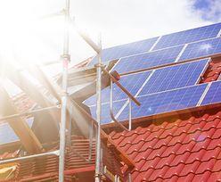 Zielona energia w polskich firmach
