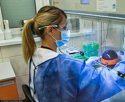 PZ Cormay zgłosił do urzędu testy wykrywające koronawirusa. Akcje spółki wystrzeliły