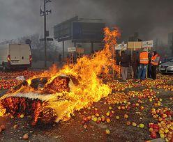 Protest Agrounii. Warszawski ratusz sprawdził straty