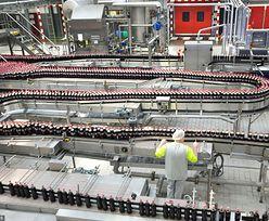 Coca-Cola inwestuje w Polsce pół miliarda złotych