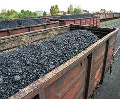 """Embargo na węgiel z Rosji. """"Ekonomicznie Polsce to się nie opłaca"""""""