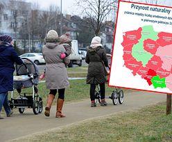Przyrost naturalny. Większość miast się wyludnia. Najgorzej jest w Łodzi