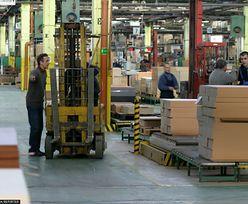 Forte wstrzyma produkcję mebli. Wszystkie zakłady zamknięte przez co najmniej dwa tygodnie