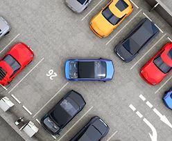 Ceny za parkowanie rosną. Samorządy stają w blokach