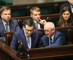 """Międzynarodowi eksperci miażdżą ustawę ws. cen prądu. """"Bruksela się na nią nie zgodzi"""""""