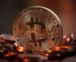 Kryptogiełda płaci ponad milion złotych za dane o szantażyście