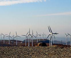 Wichury w Polsce. Tysiące odbiorców bez prądu, a jak radzą sobie z nimi wiatraki?